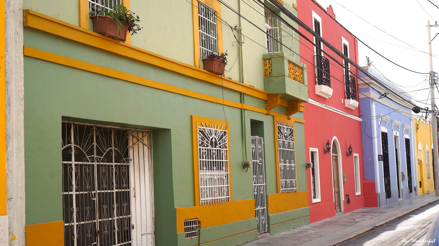 Merida Travel Guide   Things to do   Where to stay   What to eat   Restaurants   Transportation   Day Trips   Merida Mexico